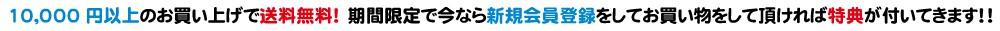 ネットワークジャパン 公式 ウェブサイト オンラインストア 送料無料 会員 特典 12月25日 クリスマス SOUNDMAGIC QUADRAL RealCable 通販 メーカー 直販